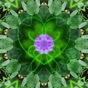 meditace srdce
